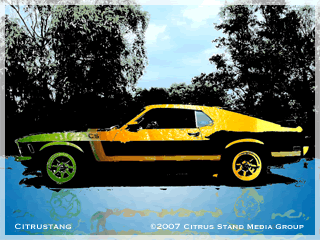 The Citrus Stang